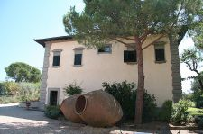 B&B accommodation in Chianti